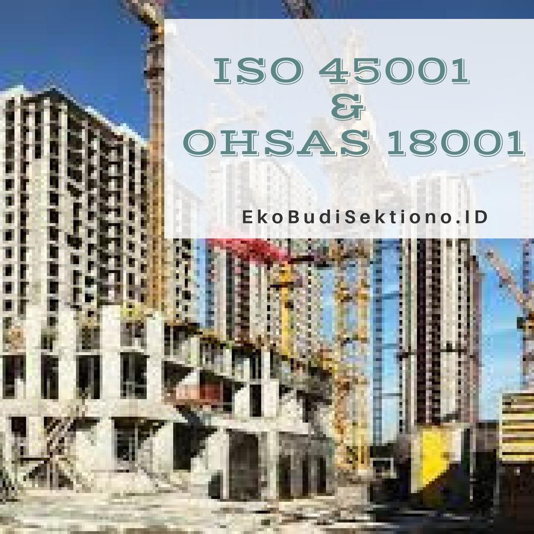 Konsultan ISO 45001 pengembangan